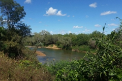 Old Crossing Daly River 16-6-16